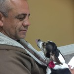 Pet Sitting at Weston Aliana 1