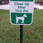 Pet Sitting at Weston Clean after your pet