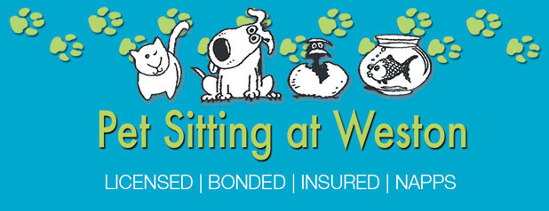 Weston Pet Sitting Services